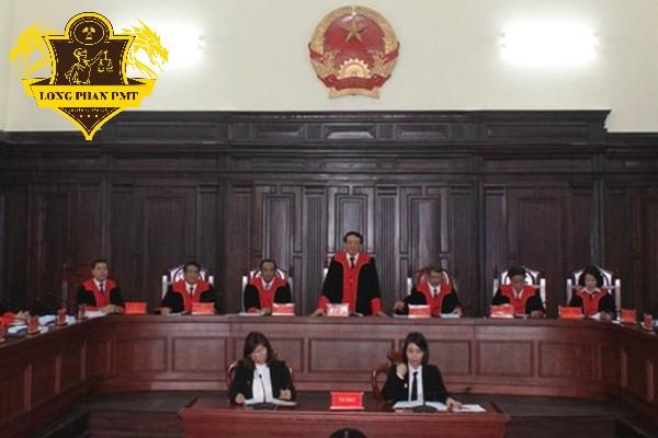 Dịch vụ Luật sư khởi kiện