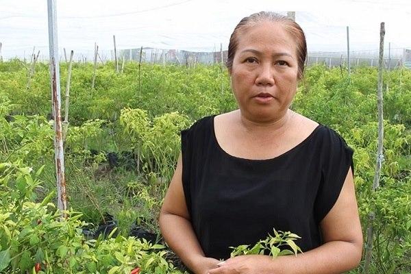 Cô Nguyễn Kim Hồng Huệ