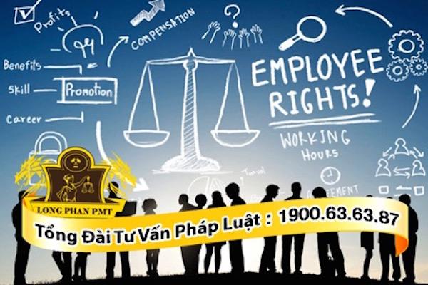 luật sư giỏi tại công ty luật long phan pmt tư vấn mọi vấn đề người lao động gặp phải